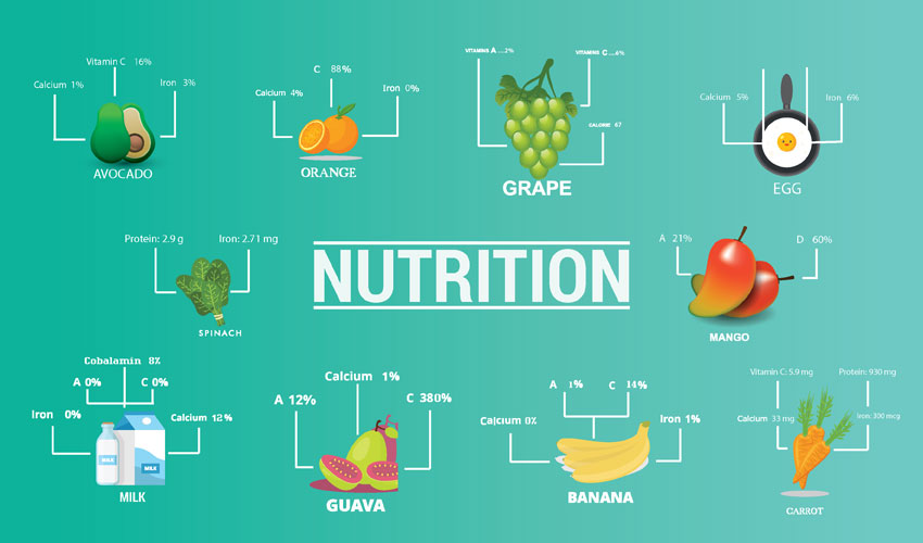 Basic Types of Nutrition with Explanations